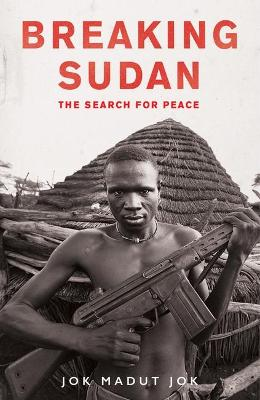Breaking Sudan by Jok Madut Jok