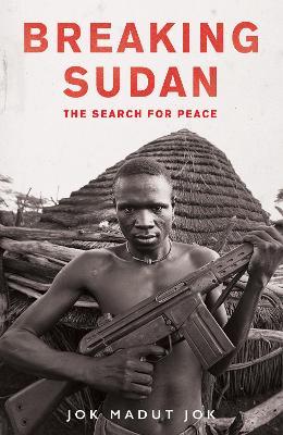 Breaking Sudan by Jok Madut Jok