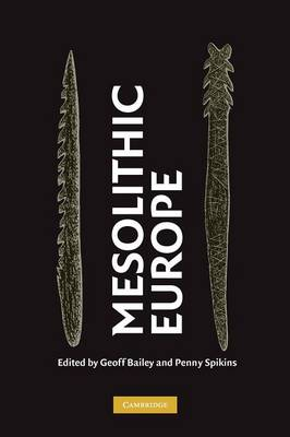 Mesolithic Europe book