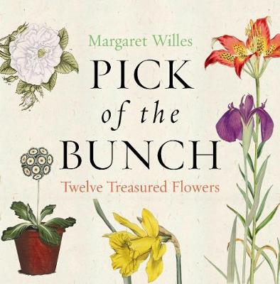 Pick of the Bunch by Margaret Willes