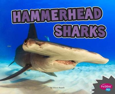 Hammerhead Sharks book