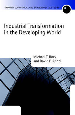 Industrial Transformation in the Developing World book