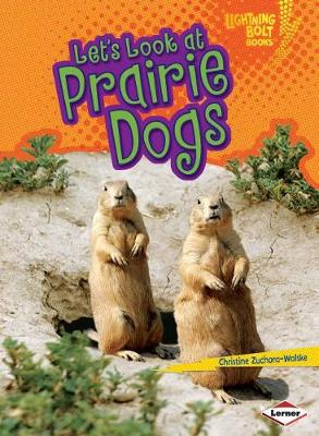 Let's Look at Prairie Dogs by Christine Zuchora-Walske