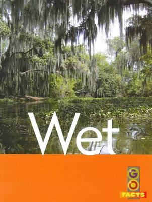Wet by Liz Flaherty