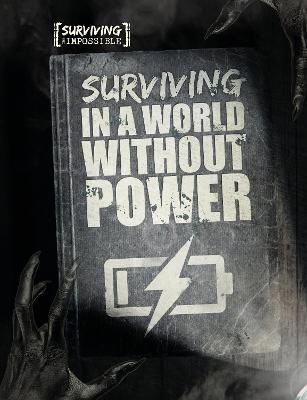 Surviving in a World Without Power book
