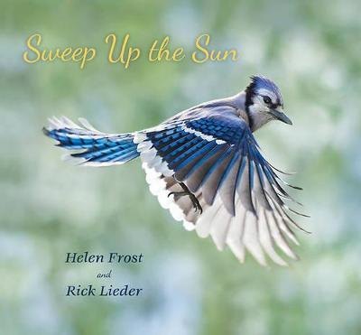 Sweep Up the Sun by Helen Frost