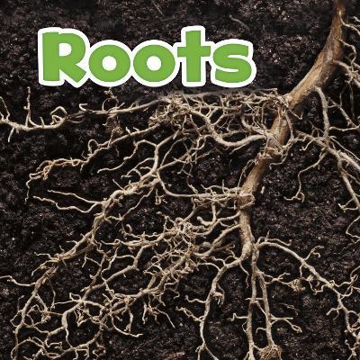 Roots by Marissa Kirkman