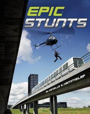 Epic Stunts book