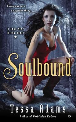 Soulbound book