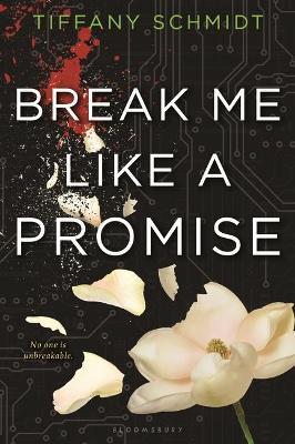 Break Me Like a Promise by Tiffany Schmidt
