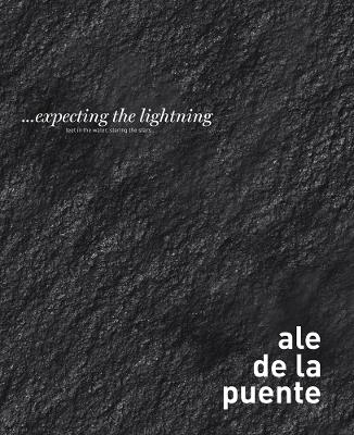 ... Expecting the Lightning book