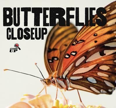 Butterflies CloseUp by Wild Dog Books