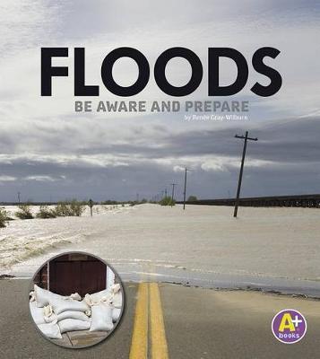Floods by Renee