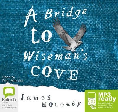 A Bridge To Wiseman's Cove by James Moloney