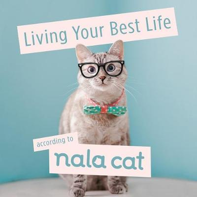 Living Your Best Life According to Nala Cat book
