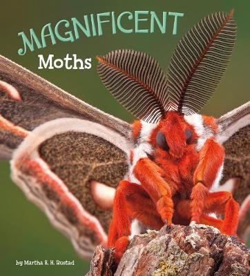 Magnificent Moths book
