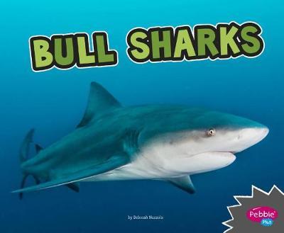 Bull Sharks by Deborah Nuzzolo
