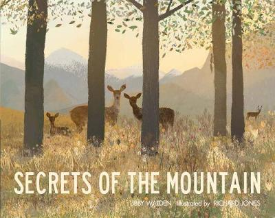 Secrets of the Mountain book