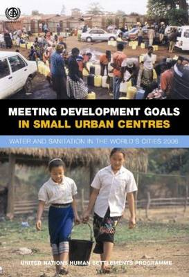 Meeting Development Goals in Small Urban Centres book