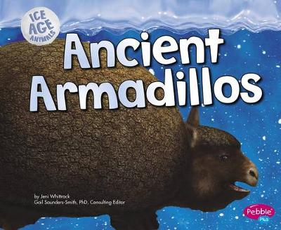 Ancient Armadillos by Jeni Wittrock