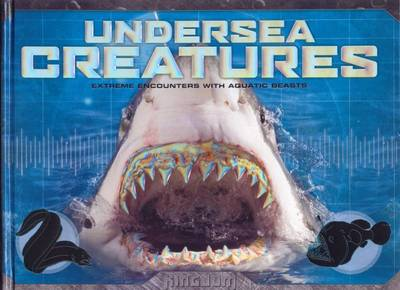 Kingdom - Undersea Creatures by null