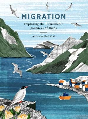 Migration: Exploring the remarkable journeys of birds by Melissa Mayntz