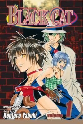 Black Cat, Vol. 9 by Kentaro Yabuki