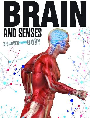 Brain and Senses by Dr Jen Green