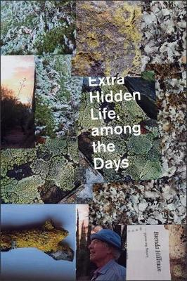 Extra Hidden Life, among the Days by Brenda Hillman