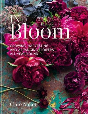 In Bloom by Clare Nolan