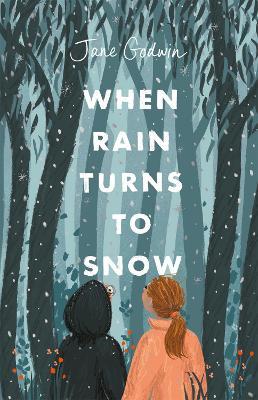 When Rain Turns to Snow by Jane Godwin