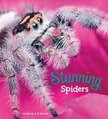 Stunning Spiders book