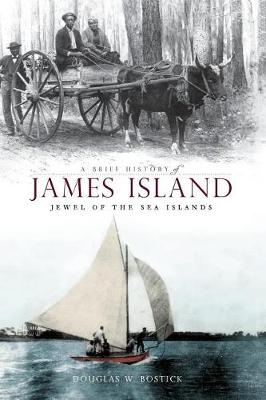 A Brief History of James Island by Douglas W Bostick