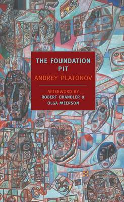 Foundation Pit book