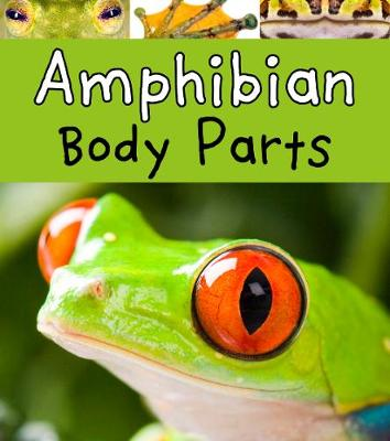 Amphibian Body Parts by Clare Lewis
