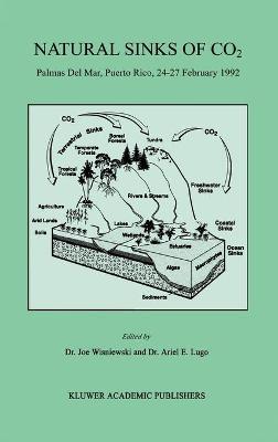 Natural Sinks of CO2 by Joe Wisniewski