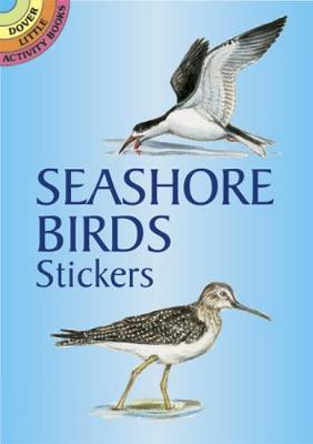 Seashore Bords Stickers by Dorothea Barlowe