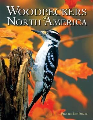Woodpeckers of North America book