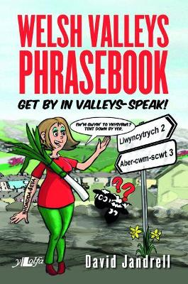 Welsh Valleys Phrasebook - Get by in Valleys-Speak! by David Jandrell