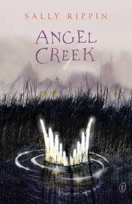 Angel Creek book