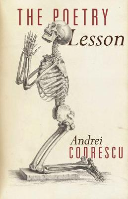 Poetry Lesson by Andrei Codrescu