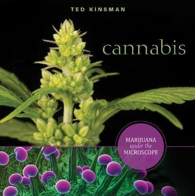 Cannabis by Ted Kinsman