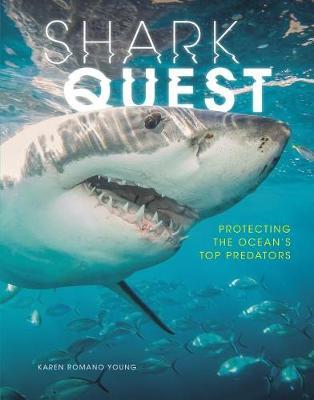 Shark Quest book