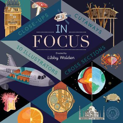 In Focus book