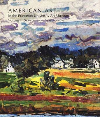 American Art in the Princeton University Art Museum Drawings and Watercolours v. 1 by John Wilmerding