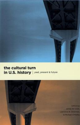 Cultural Turn in U.S. History by James W. Cook