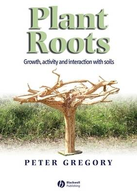 Plant Roots book