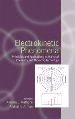 Electrokinetic Phenomena by Anurag S. Rathore