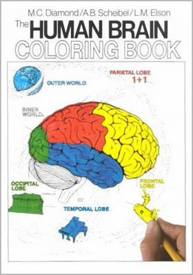 The Human Brain Coloring Book by Diamond Books