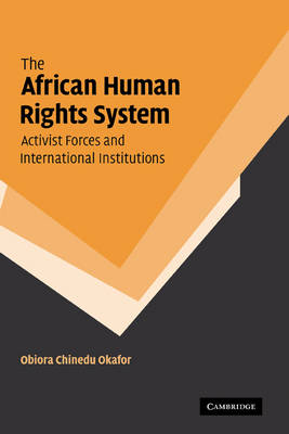 African Human Rights System, Activist Forces and International Institutions book